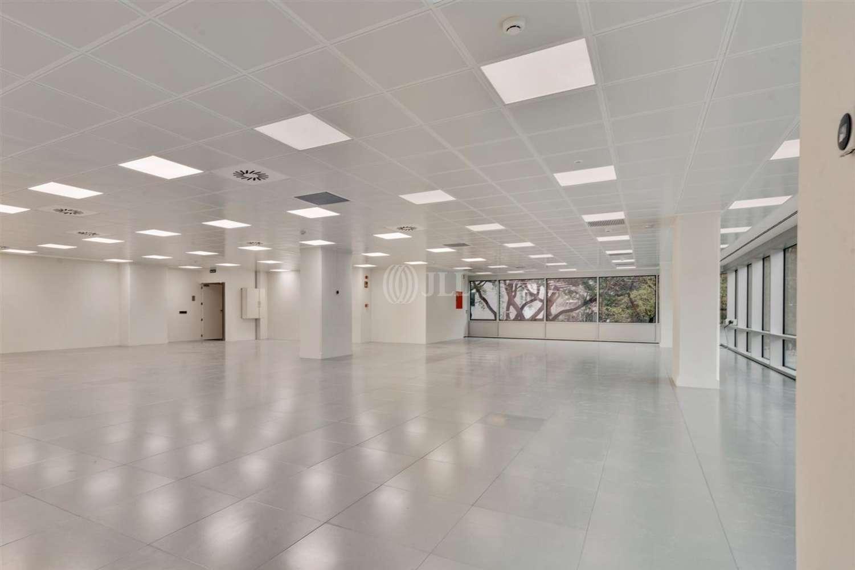 Oficina Barcelona, 08028 - EDIFICIO HERON