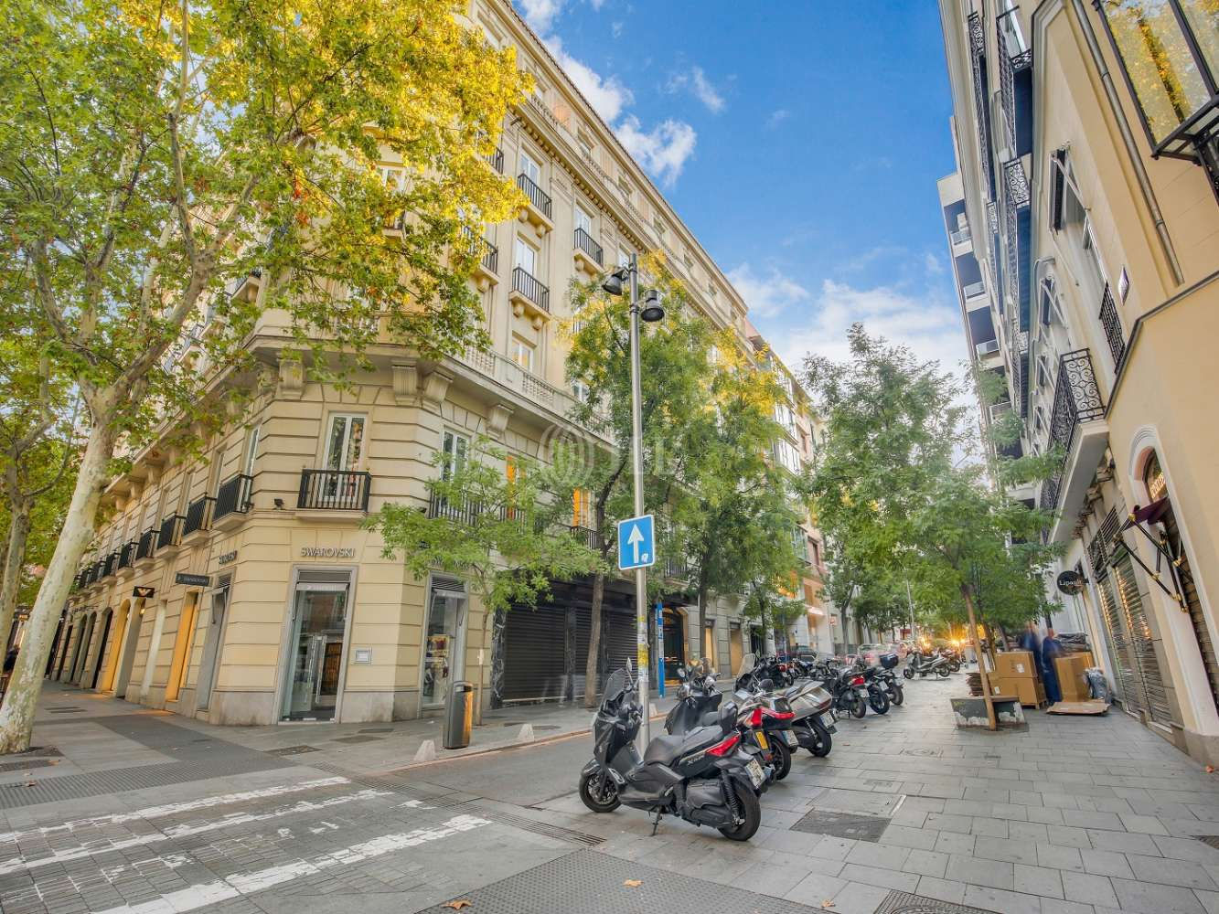 Oficina Madrid, 28001 - HERMOSILLA 11