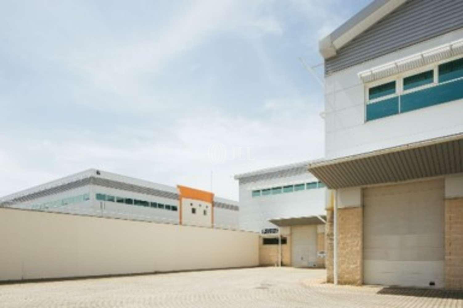 Industrial Sintra, 2710-089 - Sintra Business Park 4 - (Arm/Esc)