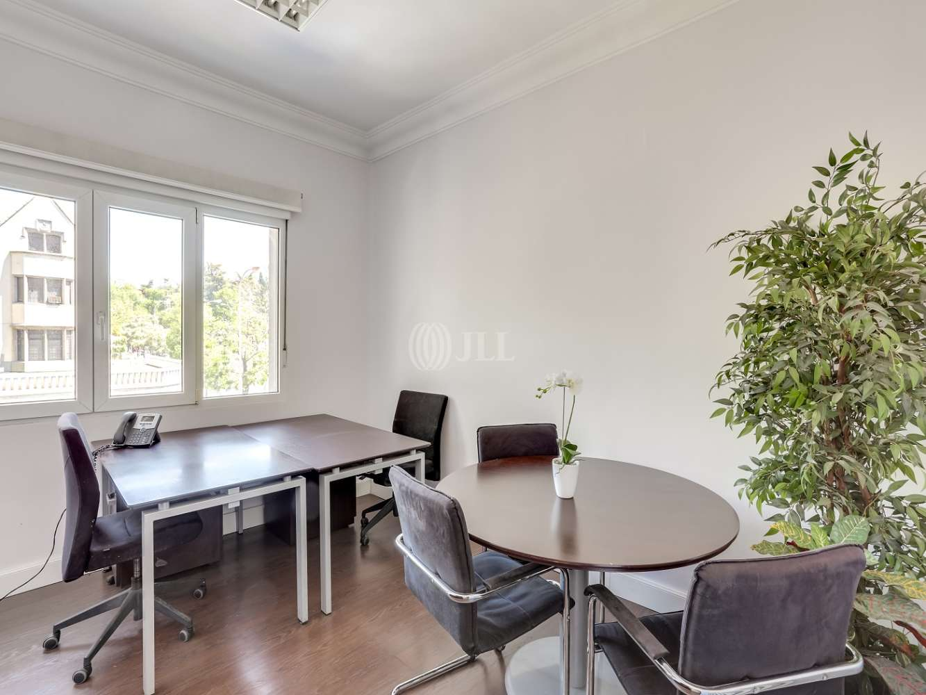 Oficina Madrid, 28006 - Coworking - Coworrking Serrano 93
