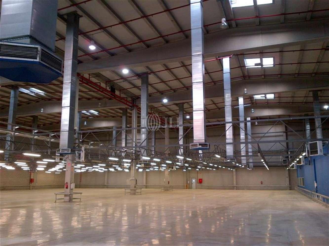 Naves industriales y logísticas Barcelona, 8040 - B0059 - PI PARC LOGISTIC ZONA FRANCA