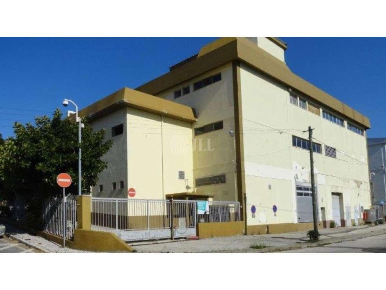Loja Amadora,  - Loja localizada em Alfragide