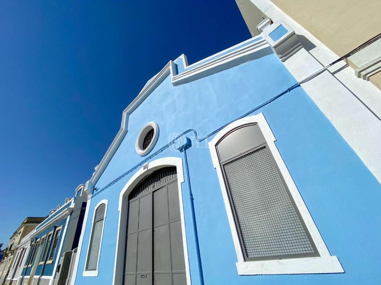 Loja Lisboa,  - Gualdim Pais 110