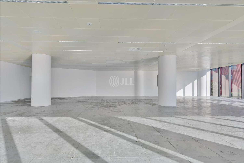 Oficina L'hospitalet de llobregat, 08908 - TORRE REALIA BCN