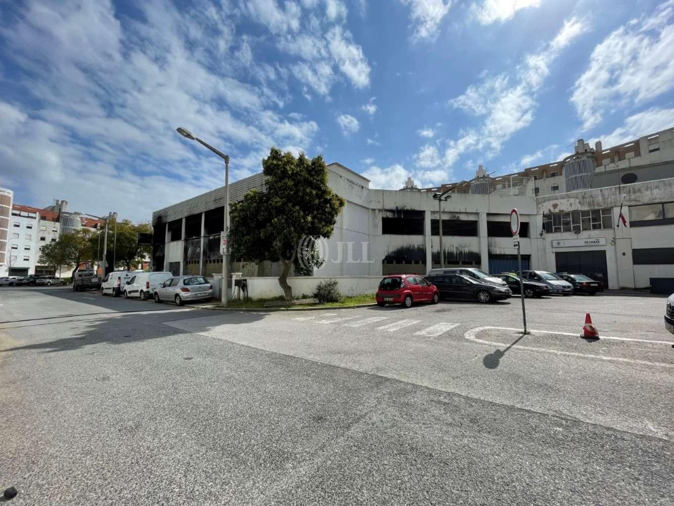 Loja Lisboa,  - Edifico Olivais
