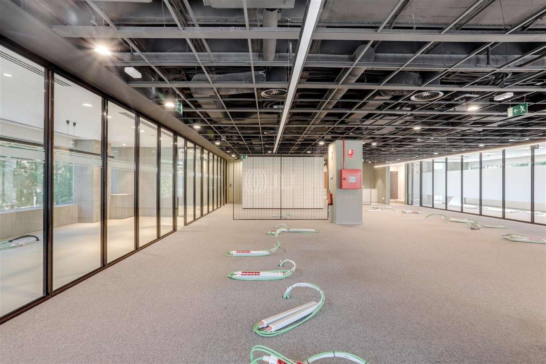 Oficina Madrid, 28016 - Eucalipto 25