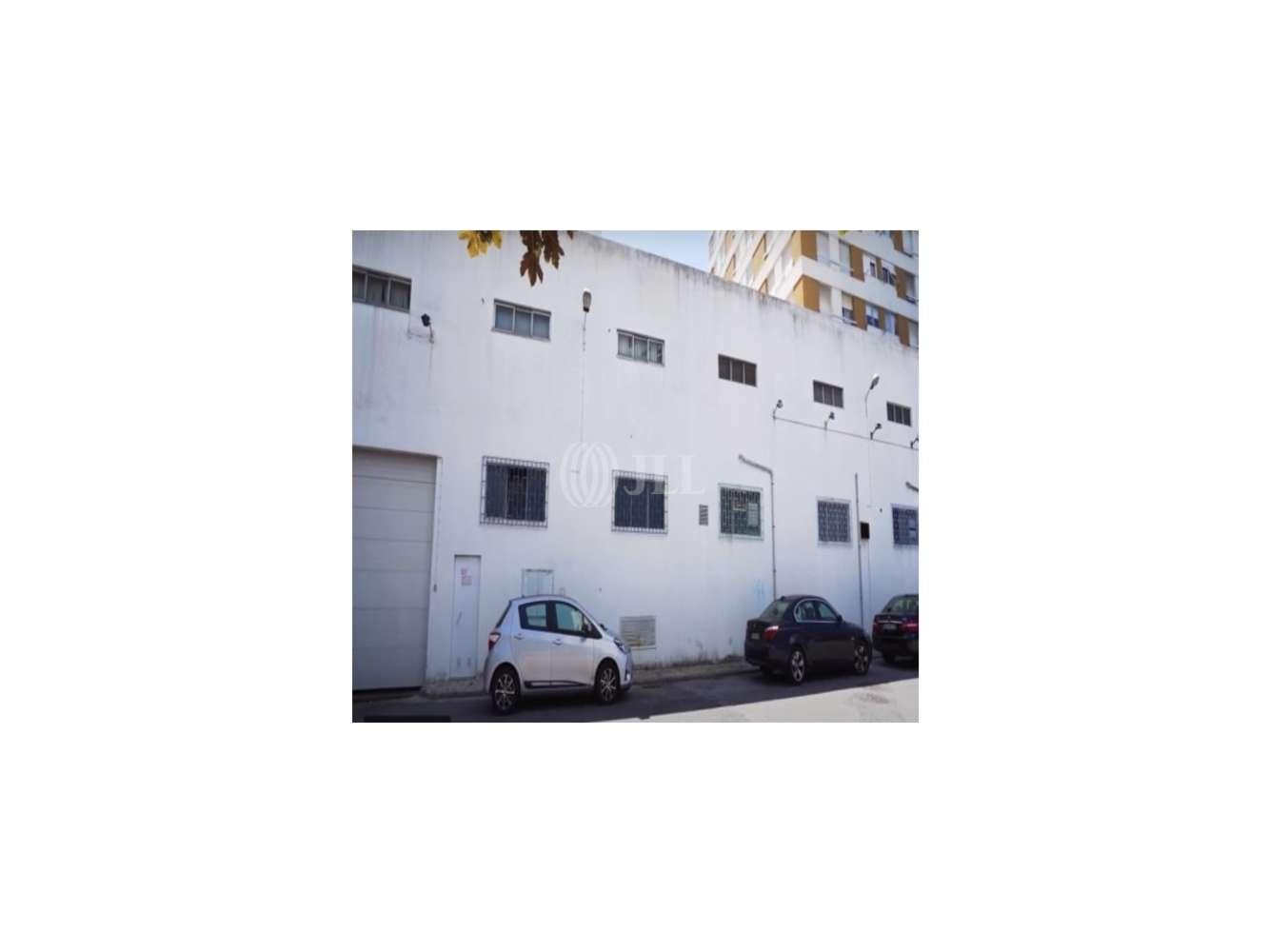 Industrial Loures,  - Rua dos Actores
