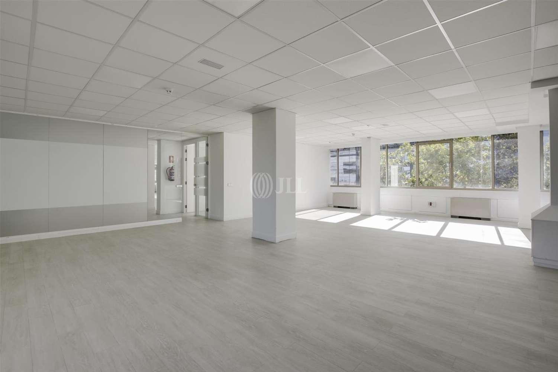 Oficina Madrid, 28002 - PRINCIPE DE VERGARA 109