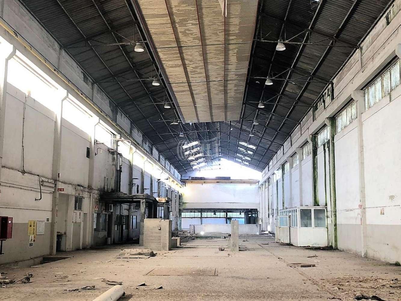 Industrial Benavente,  - Armazém Benavente