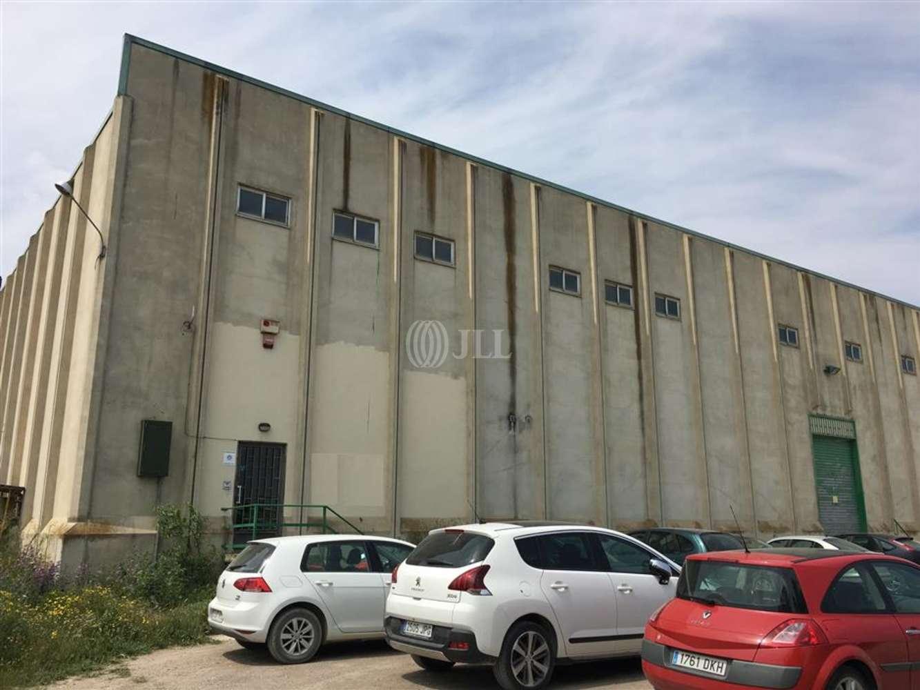 Naves industriales y logísticas Tàrrega, 25300 - Nave Industrial - B0468 - PI LA CANALETA
