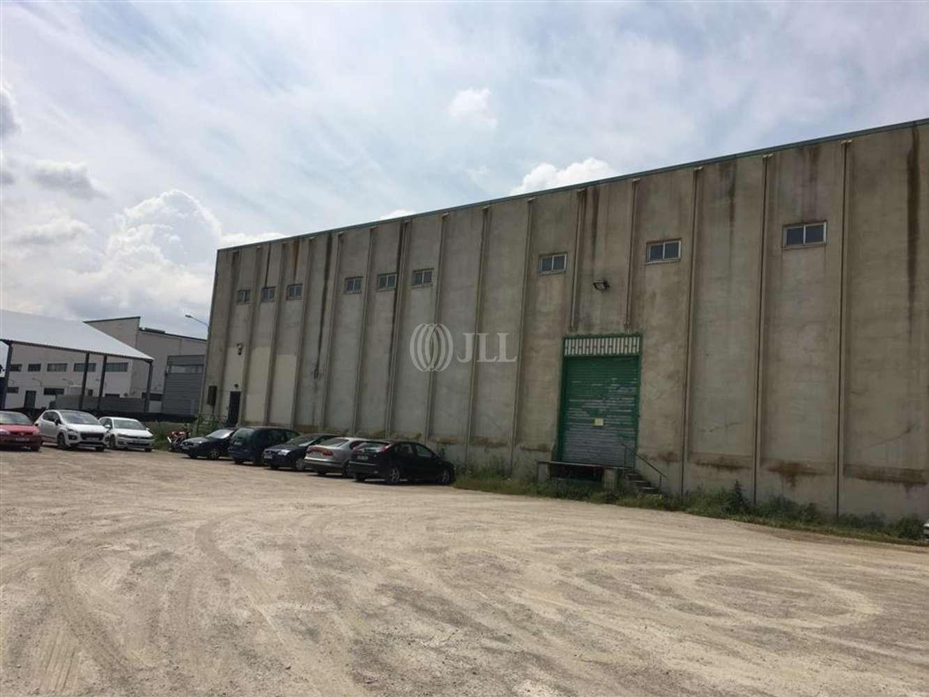 Naves industriales y logísticas Tàrrega, 25300 - Nave Industrial - B0468 - PI LA CANALETA - 10842