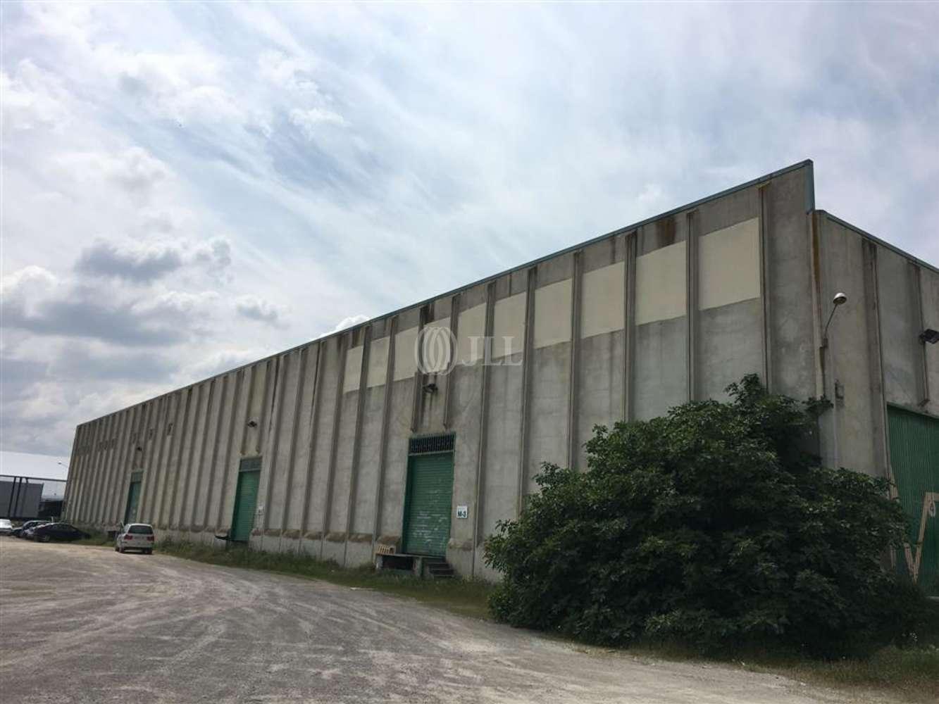 Naves industriales y logísticas Tàrrega, 25300 - Nave Industrial - B0468 - PI LA CANALETA - 10844