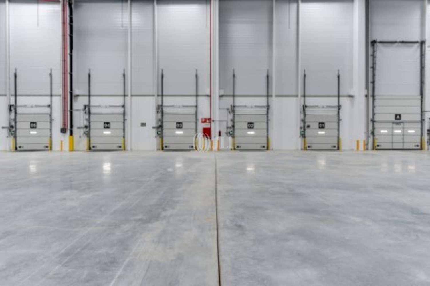 Naves industriales y logísticas San fernando de henares, 28830 - Nave Logistica - M0301 PLATAFORMA LOGÍSTICA EN ALQUILER - 10952