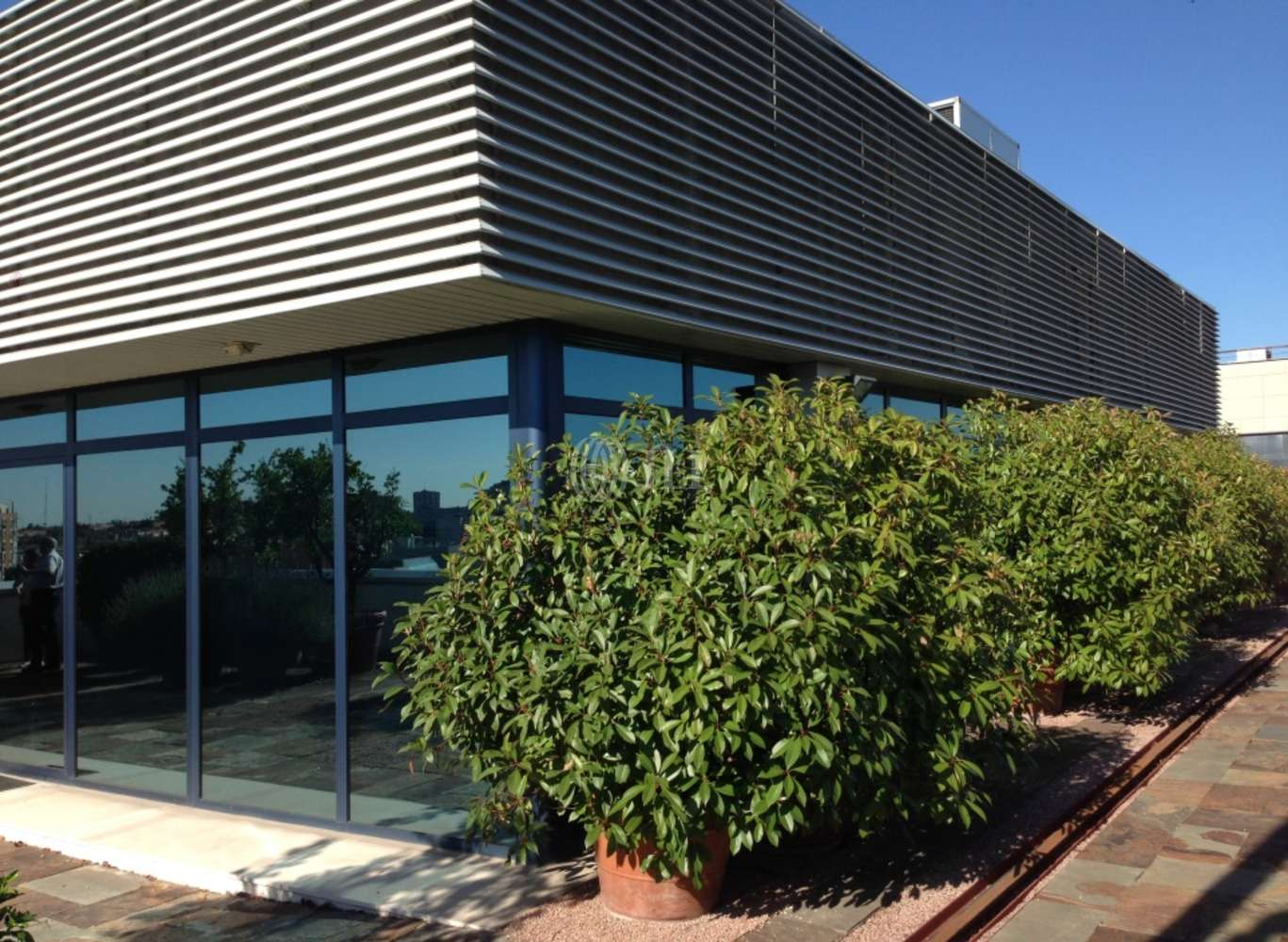 Oficina Madrid, 28034 - SALVATIERRA 3 - 2798
