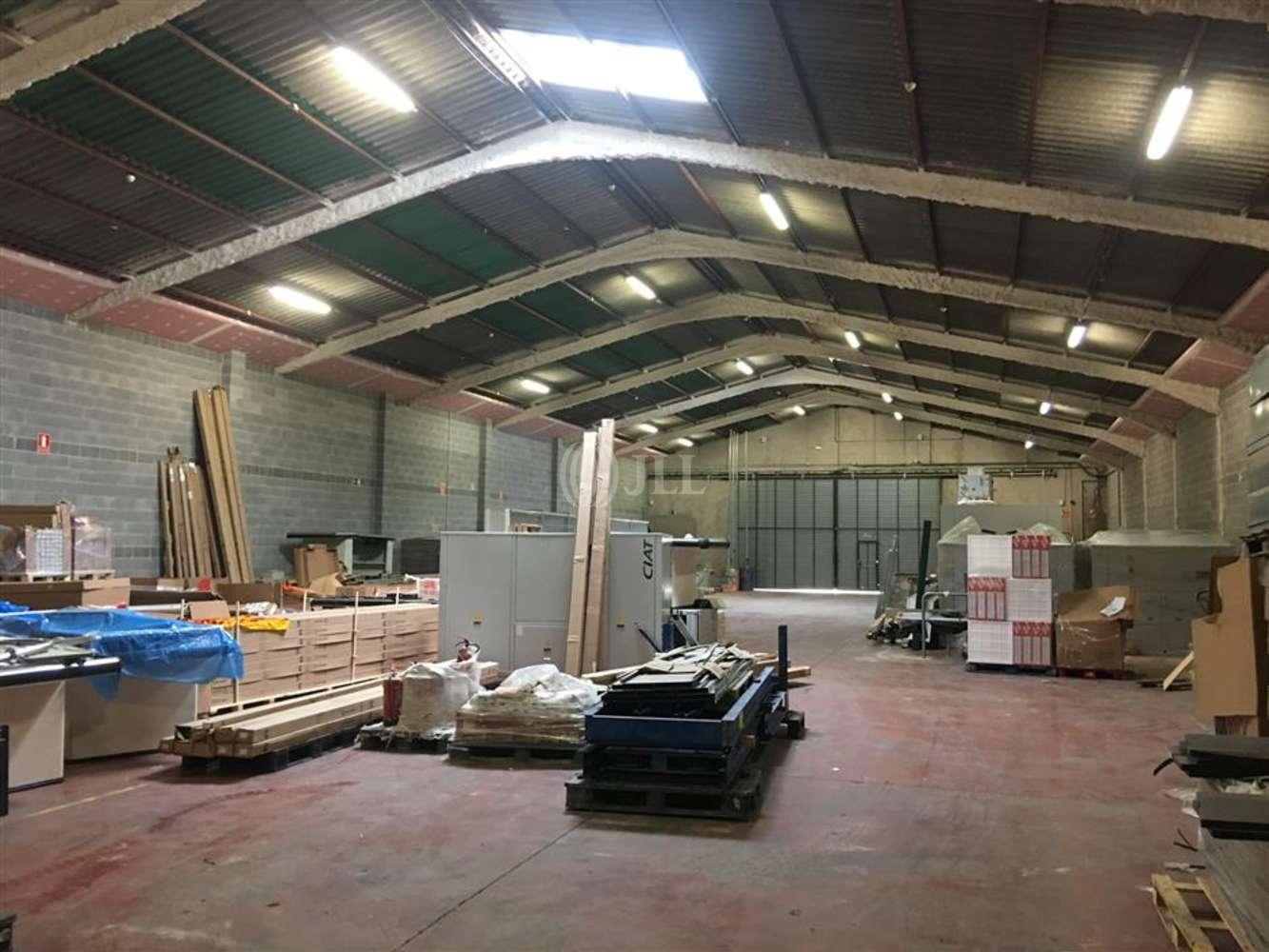 Naves industriales y logísticas Terrassa, 08227 - Nave Industrial - B0388 - TERRASSA - 7810