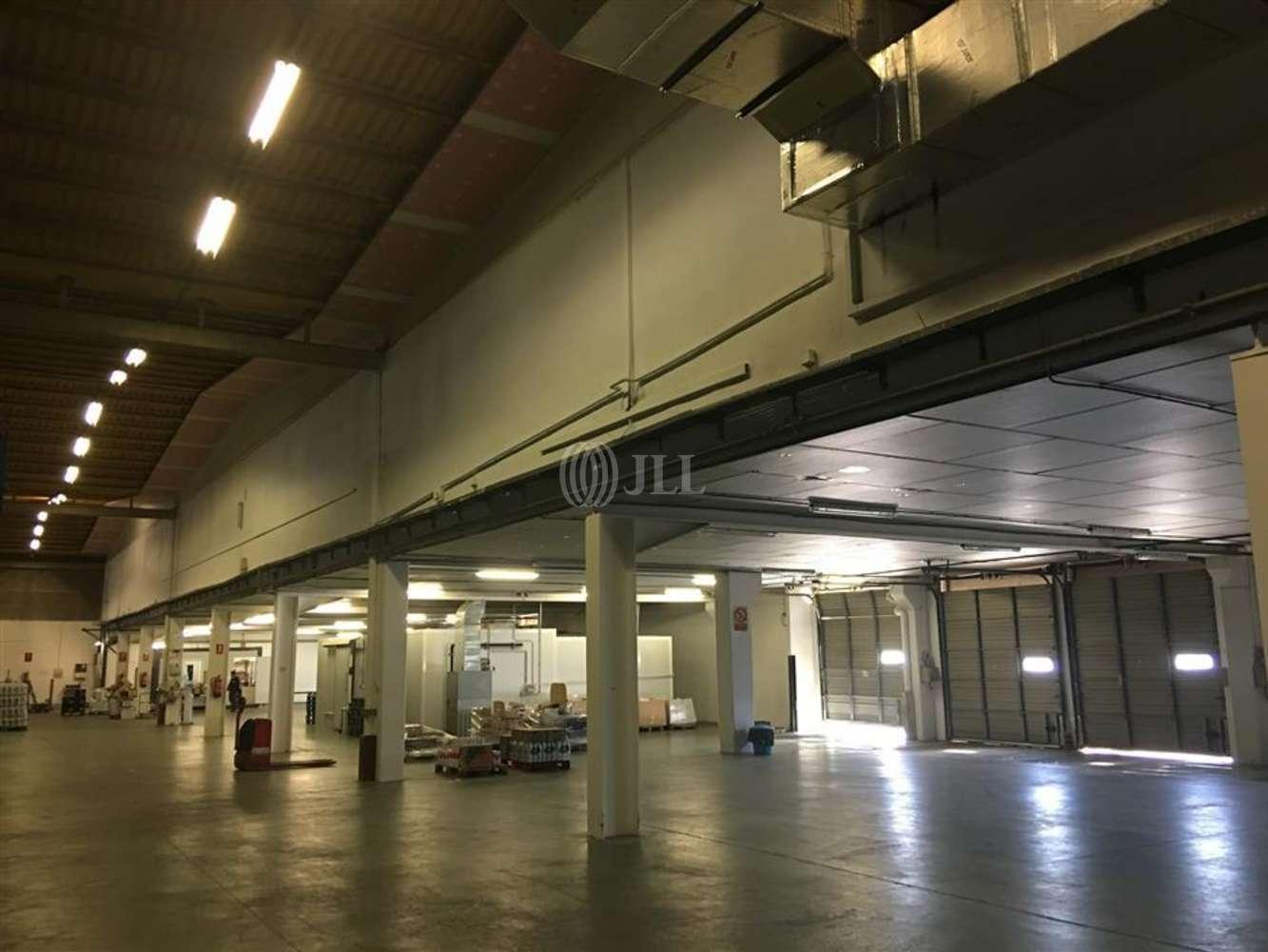 Naves industriales y logísticas Sant fruitós de bages, 08272 - Nave Logistica - B0425 - PI SANT ISIDRE - 8728