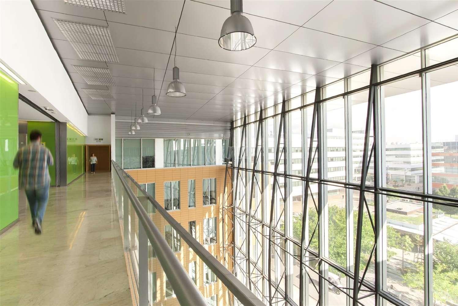 Oficina Cornellà de llobregat, 08940 - WTC ALMEDA PARK - Edificio 6 - 9231