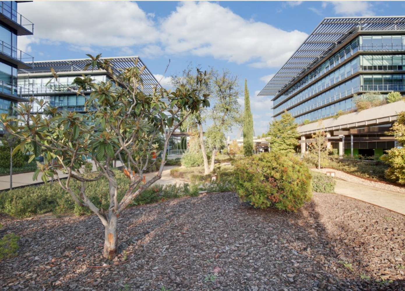 Oficina Madrid, 28050 - Edificio 1 - 12276