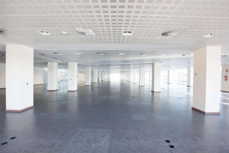 Oficina Esplugues de llobregat, 08950 - EDIFICIO IL·LUMINA - 12552