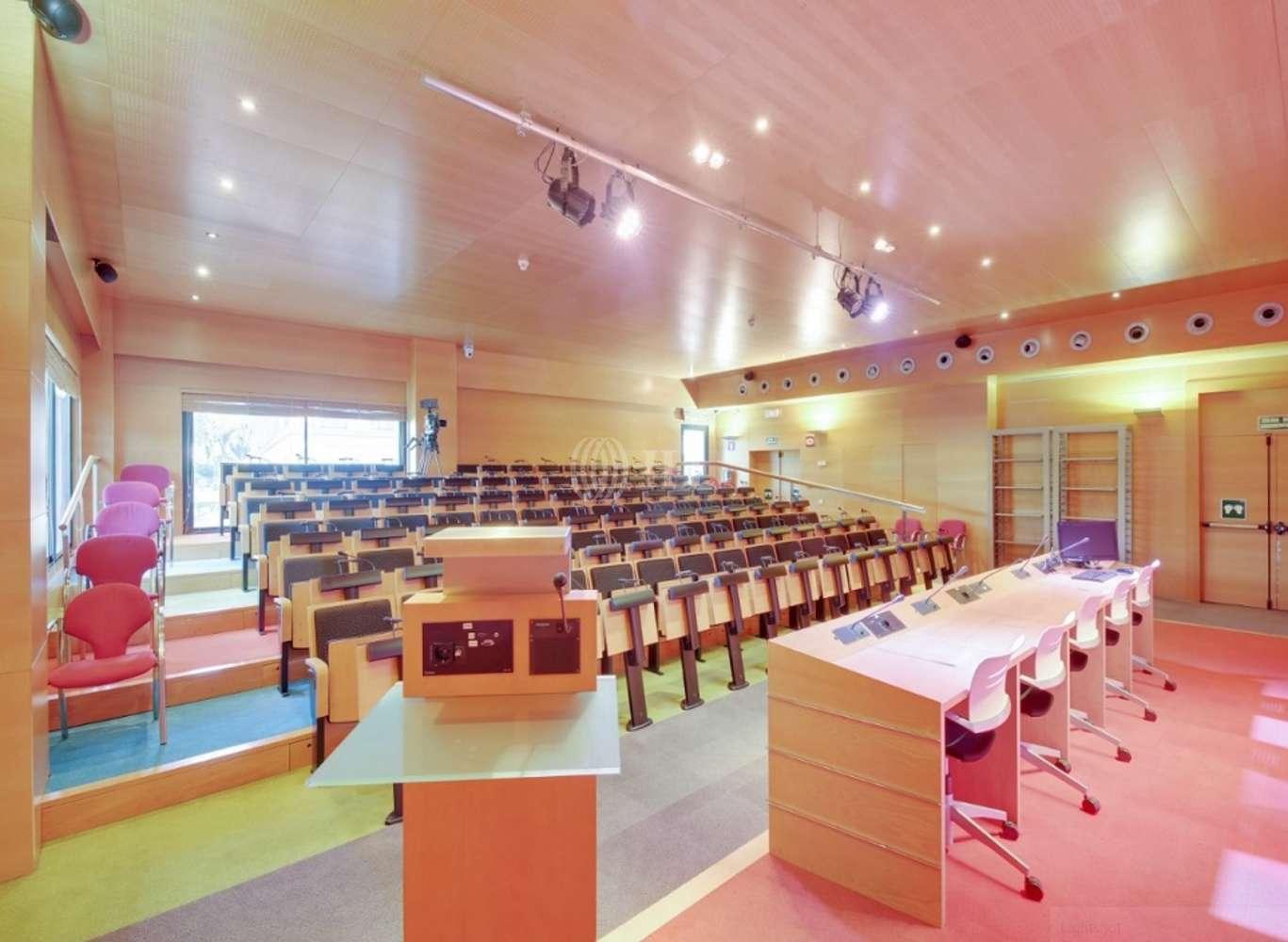 Oficina Madrid, 28033 - SAN LUIS 25 - 12846