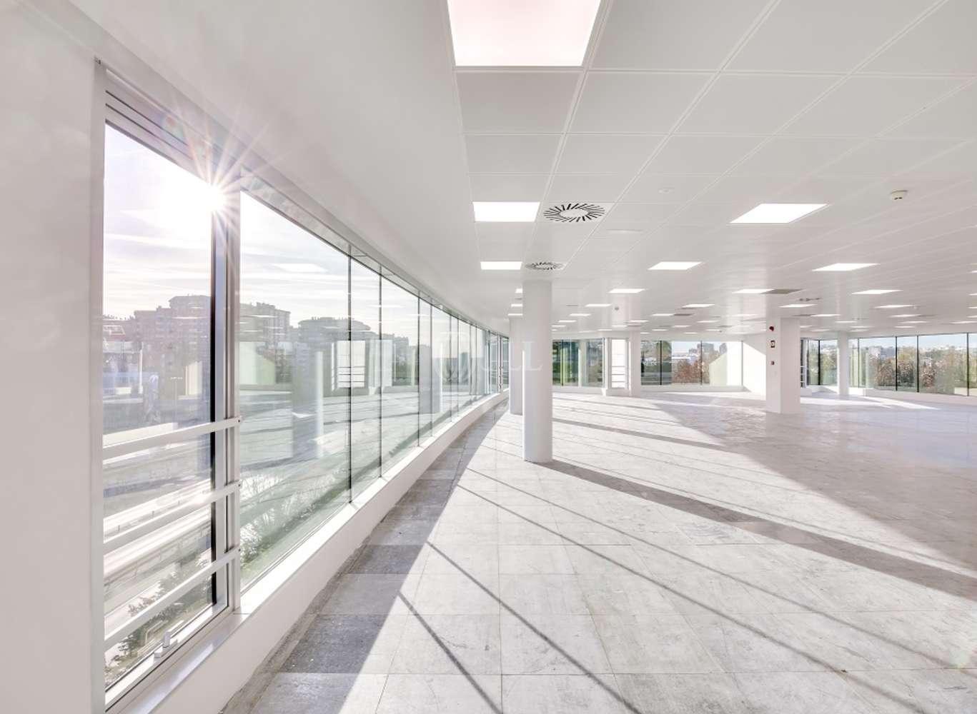 Oficina Madrid, 28016 - EUCALIPTO 33 - 13219