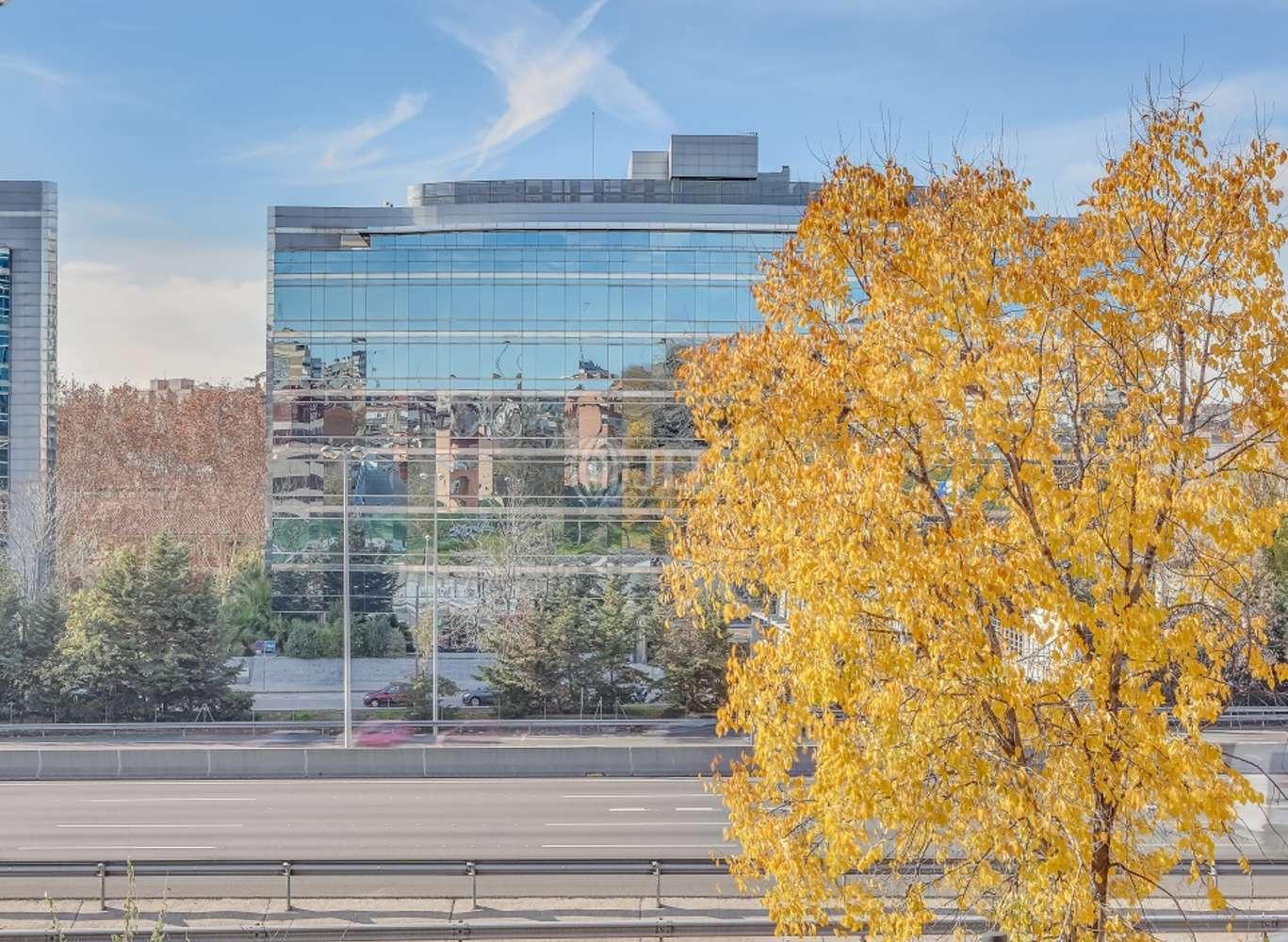Oficina Madrid, 28016 - EUCALIPTO 33 - 13224