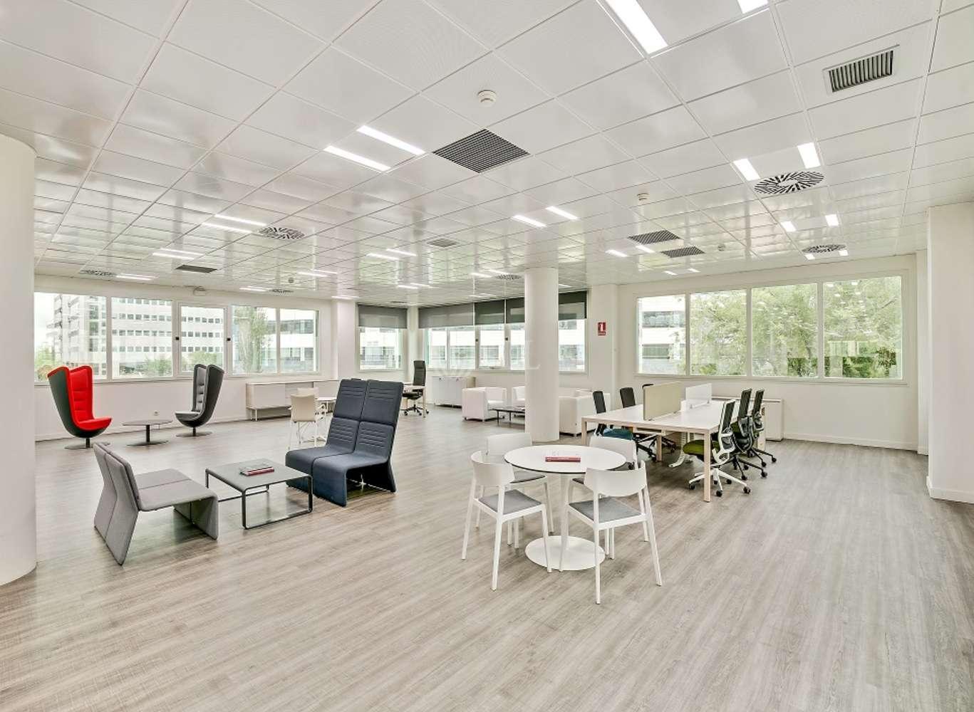 Oficina Madrid, 28050 - Delta Norte - 13709