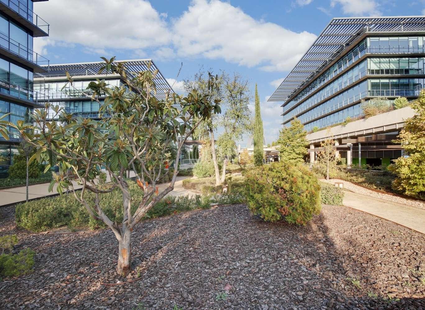 Oficina Madrid, 28050 - Edificio 2 - 13778