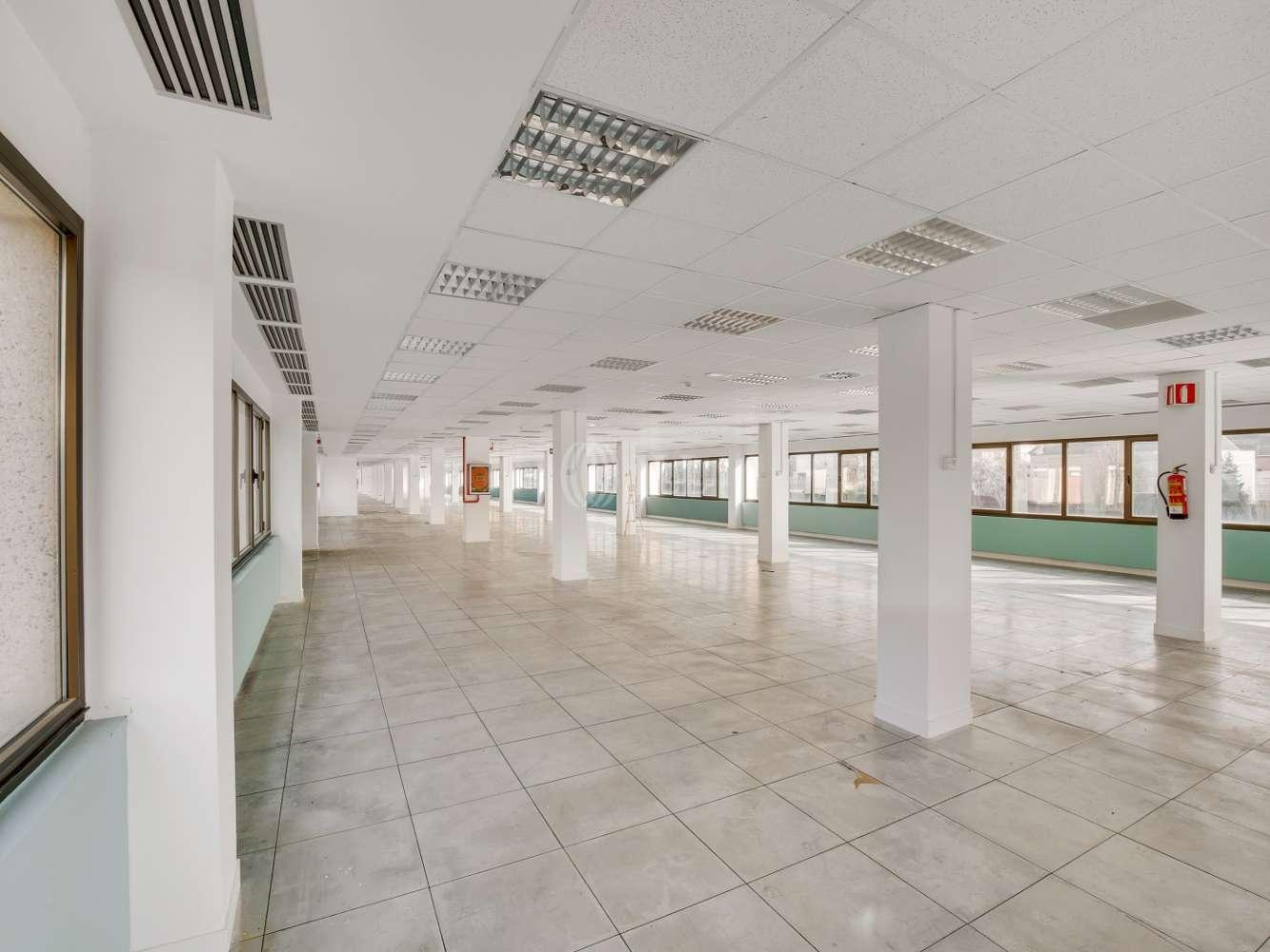 Oficina Madrid, 28023 - La Florida Business Park - 14654