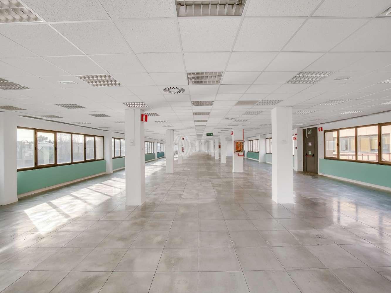 Oficina Madrid, 28023 - La Florida Business Park - 14656