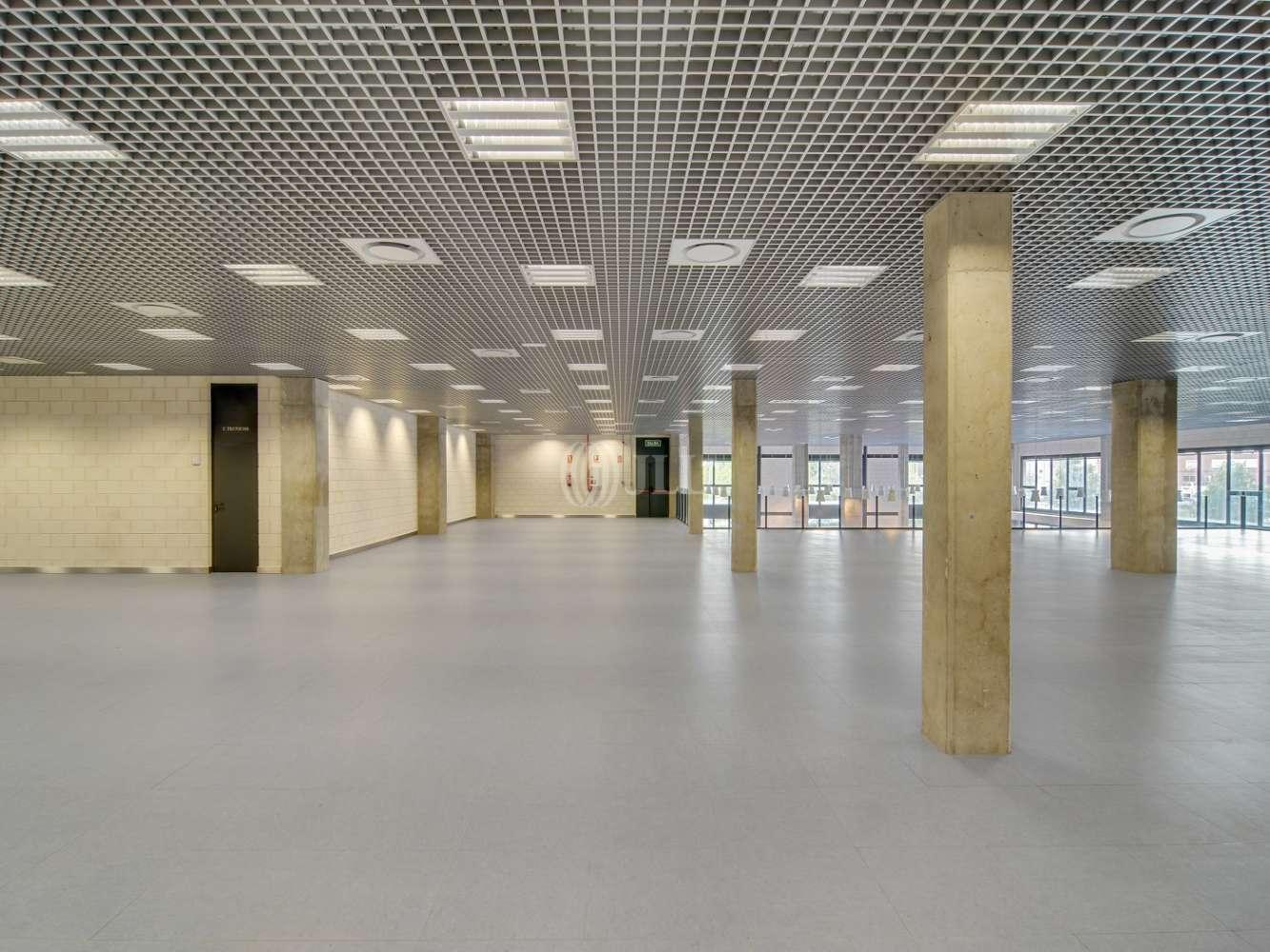Oficina Madrid, 28031 - CABEZA MESADA 5 - 15519