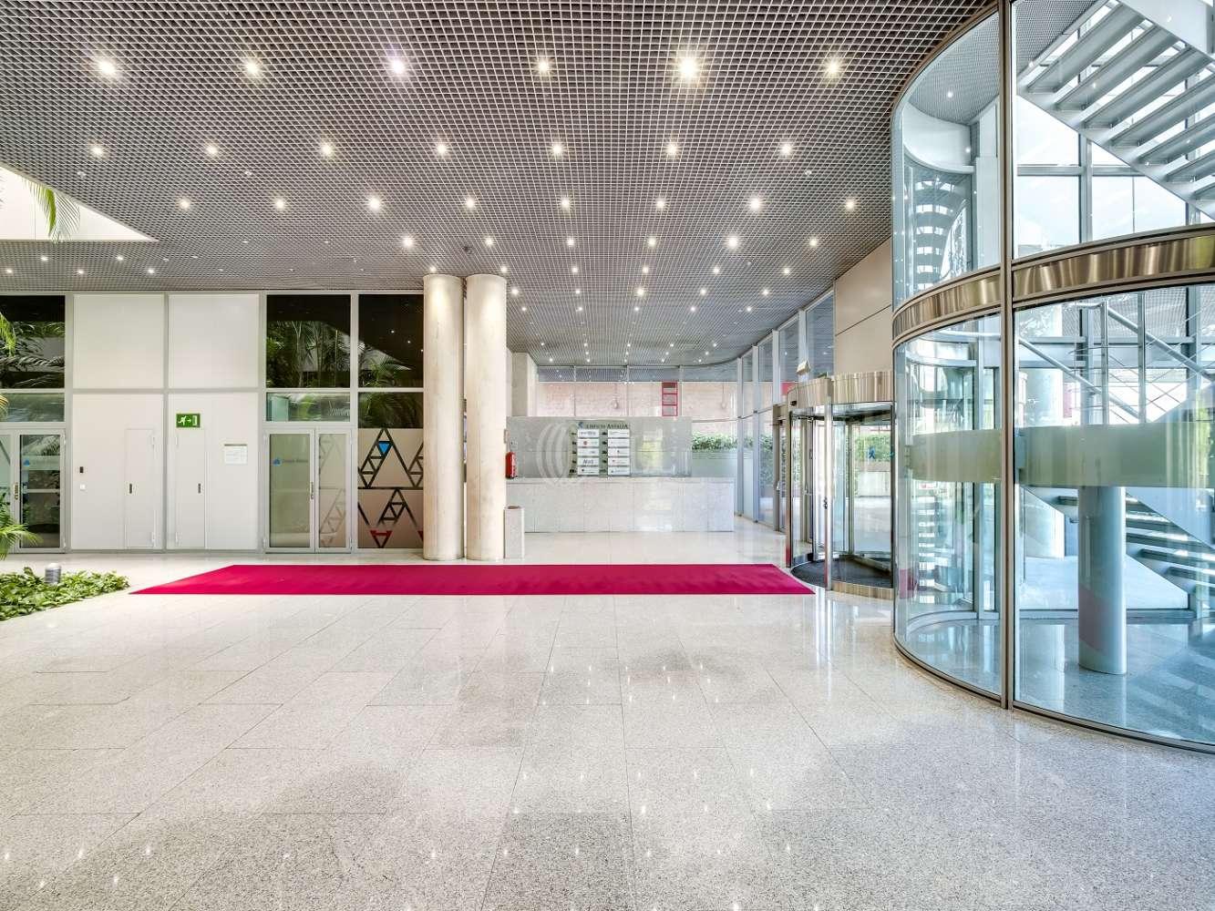 Oficina Madrid, 28037 - Antalia - 15778