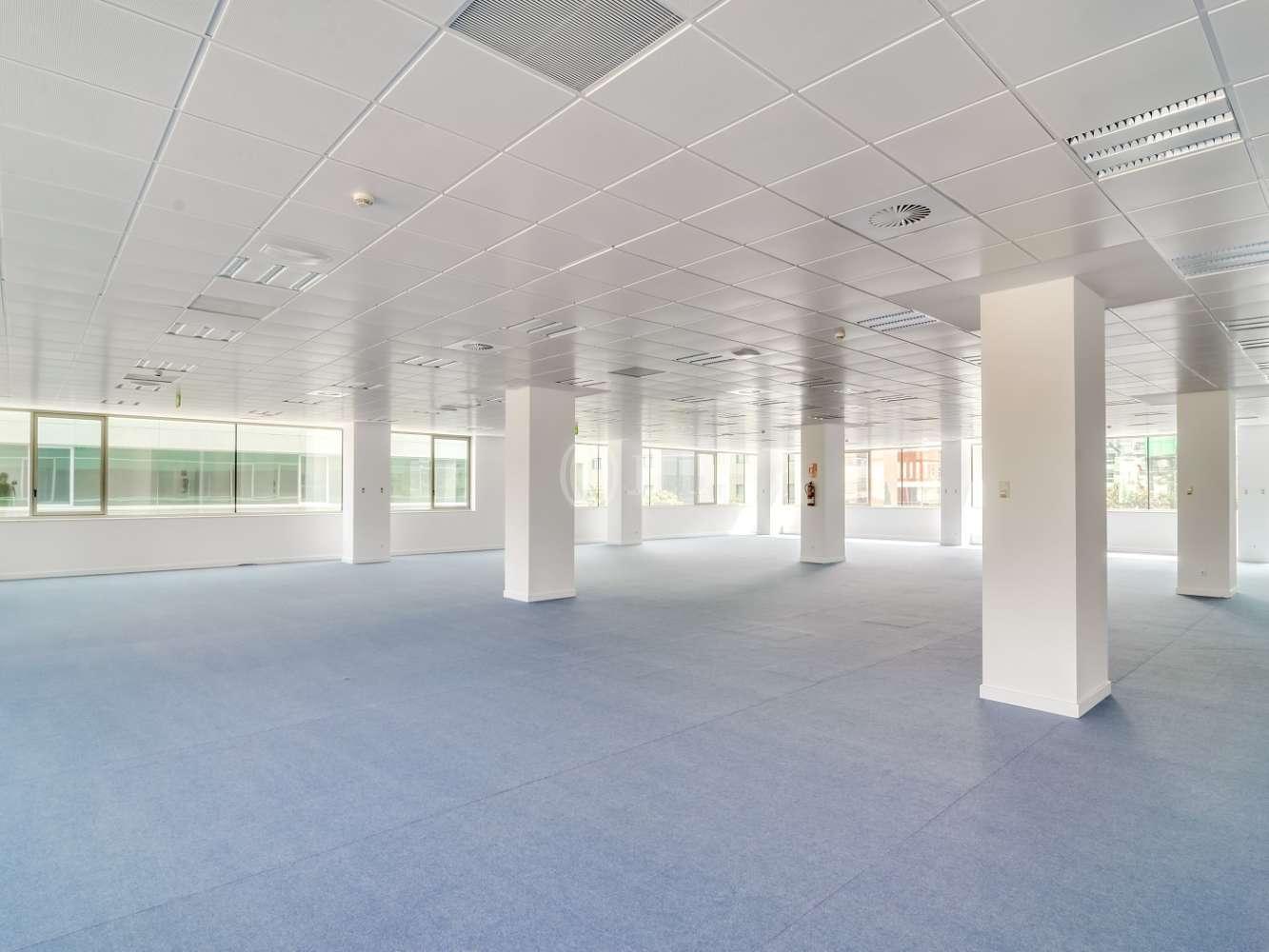 Oficina Madrid, 28050 - Edificio New York - D - 15972