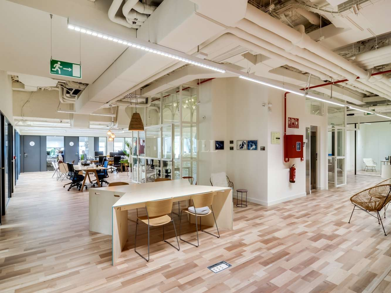 Oficina Madrid, 28020 - Coworking - Orense - 16068