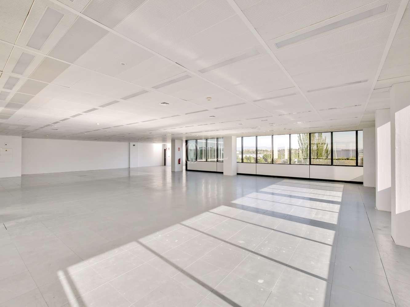 Oficina Madrid, 28042 - Edificio Egeo - 16583