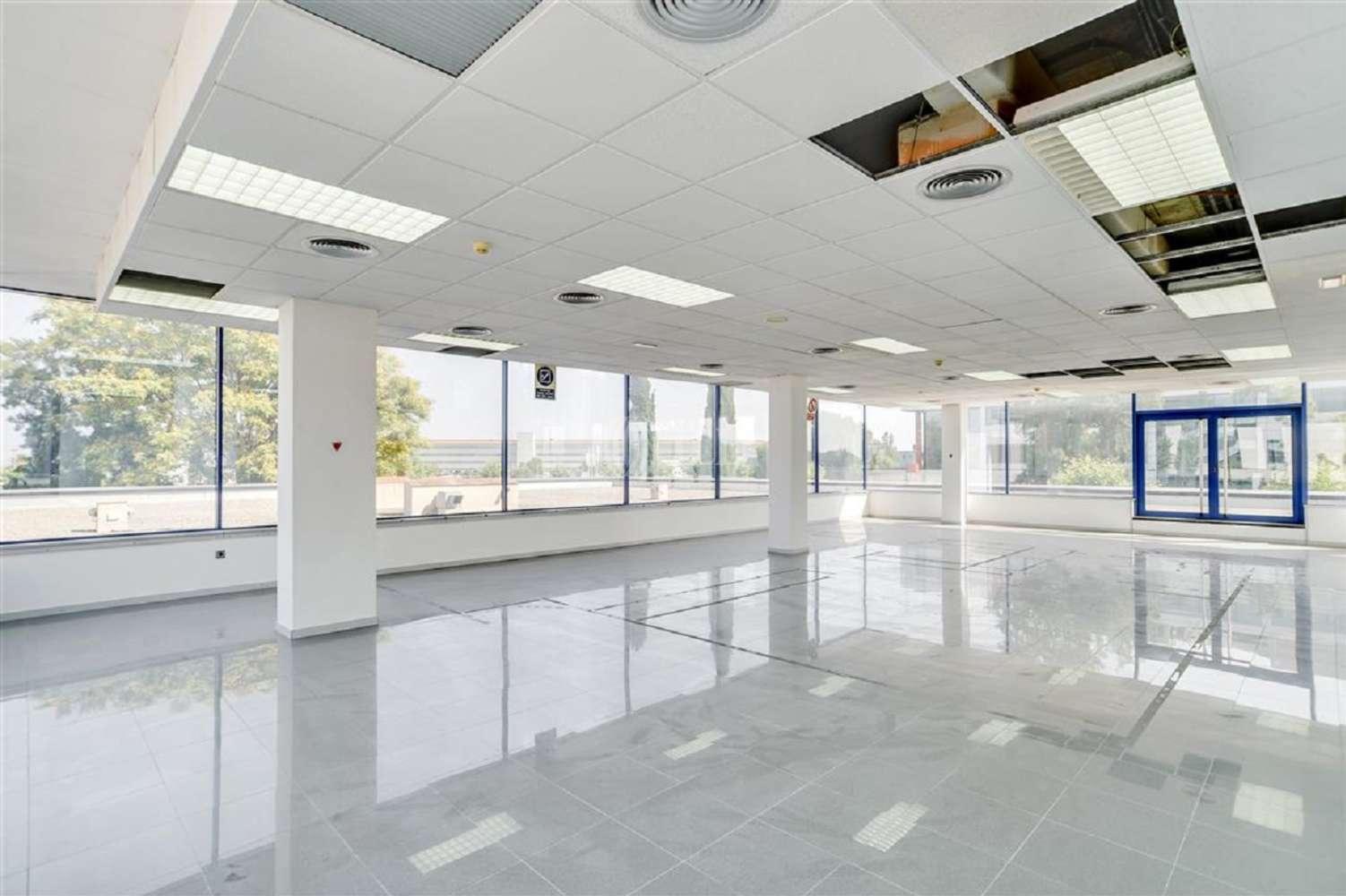 Oficina El prat de llobregat, 08820 - EDIFICIO AIRBLUE - 18509