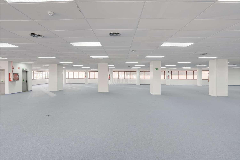 Oficina Madrid, 28050 - Edificio TANWORT I - 19802
