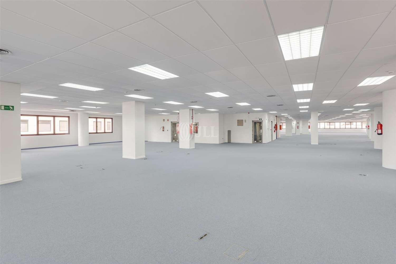 Oficina Madrid, 28050 - Edificio TANWORT I - 19813