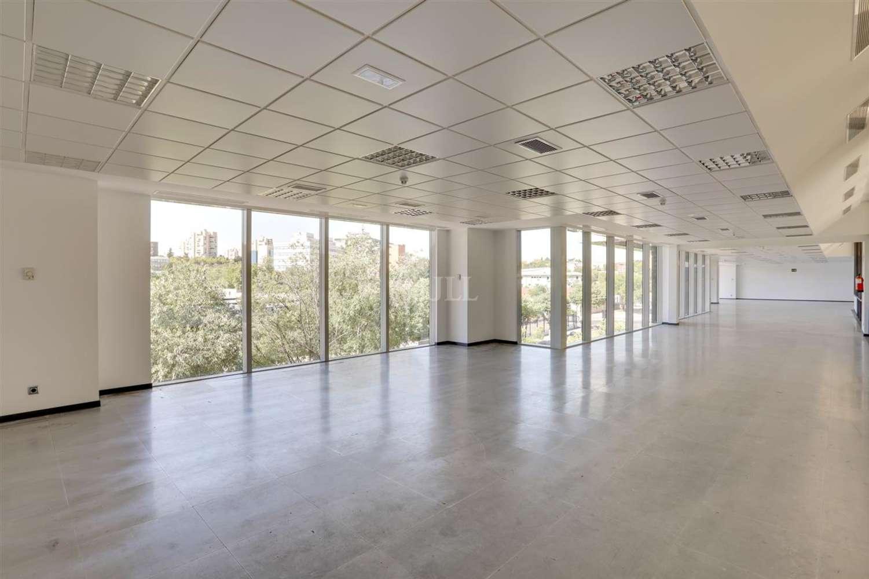 Oficina Madrid, 28043 - Mar de Cristal - 19990