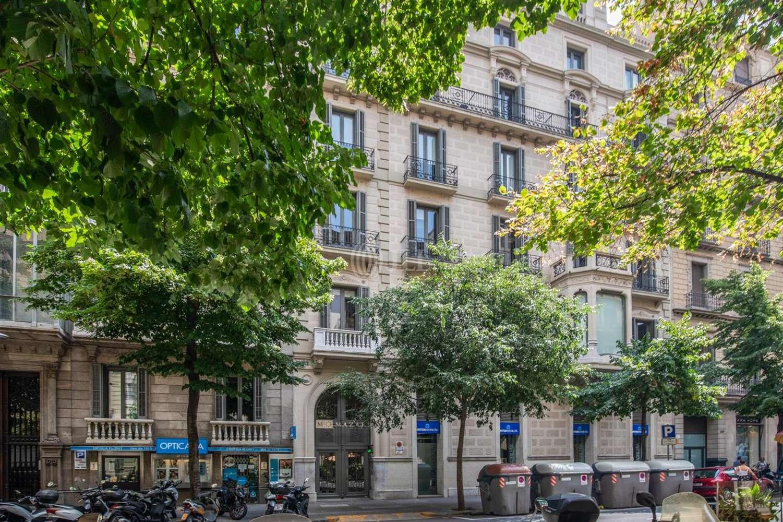 Oficina Barcelona, 08007 - CASA VINYALS - 20508