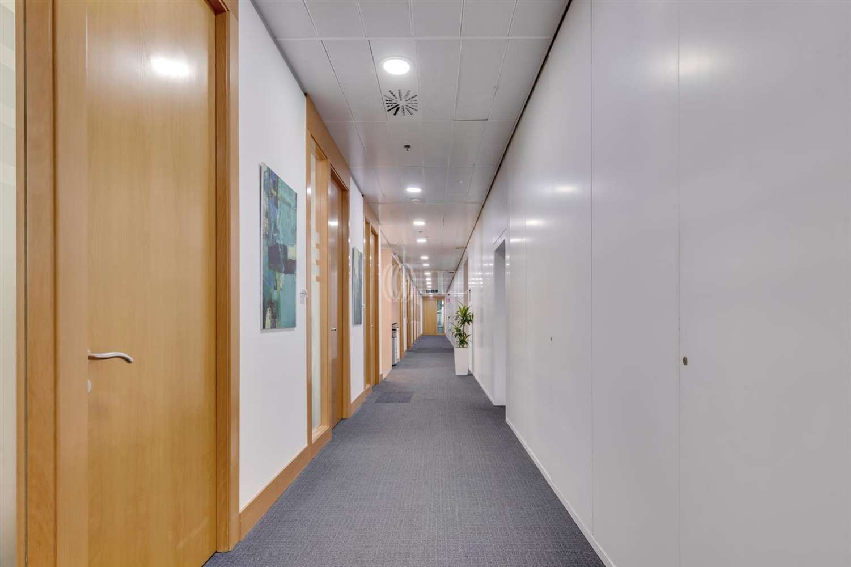 Oficina Barcelona, 08039 - Coworking - BARCELONA WORLD TRADE CENTER-EDIF. SUR - 20643