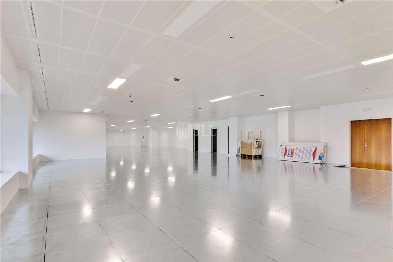 Oficina Barcelona, 08029 - L´Illa - 21169