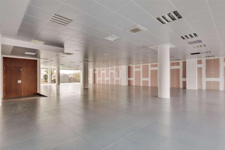 Oficina Cornellà de llobregat, 08940 - P.E. ARBORETUM - EDIFICIO OLIVO - 21577