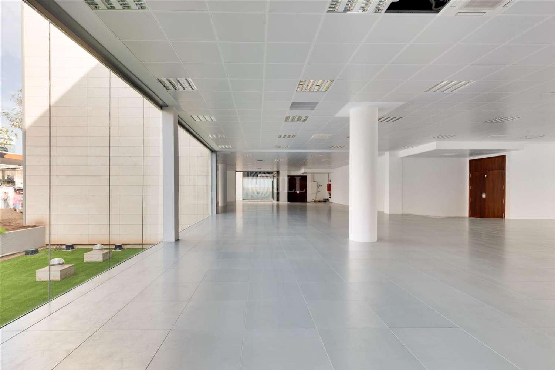 Oficina Cornellà de llobregat, 08940 - P.E. ARBORETUM - EDIFICIO OLIVO - 21580
