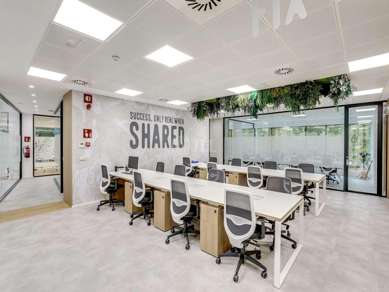 Oficina Madrid, 28016 - Coworking - EUCALIPTO - 22237
