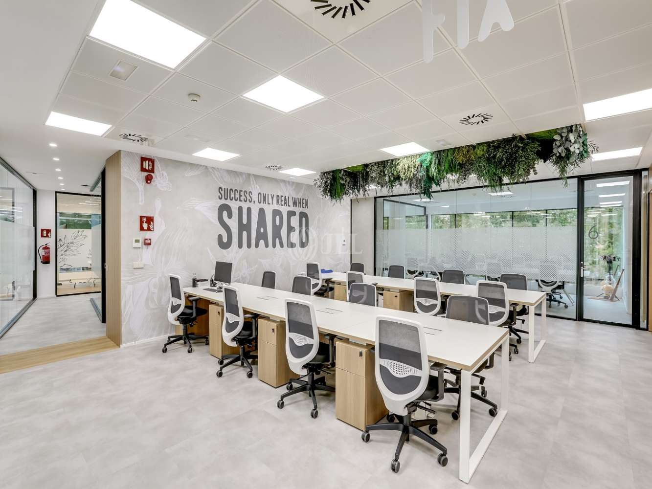 Oficina Madrid, 28016 - Coworking - EUCALIPTO - 22241