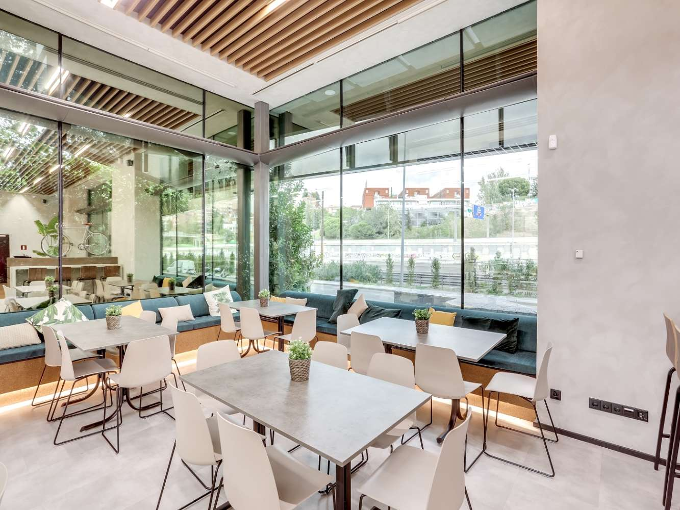Oficina Madrid, 28016 - Coworking - EUCALIPTO - 22243