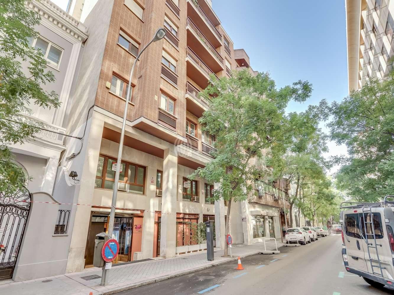 Oficina Madrid, 28006 - AYALA 120 - 22484