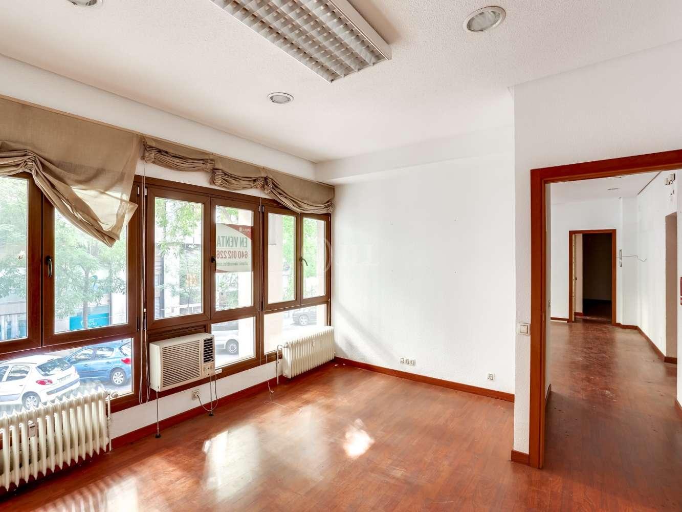 Oficina Madrid, 28006 - AYALA 120 - 22490
