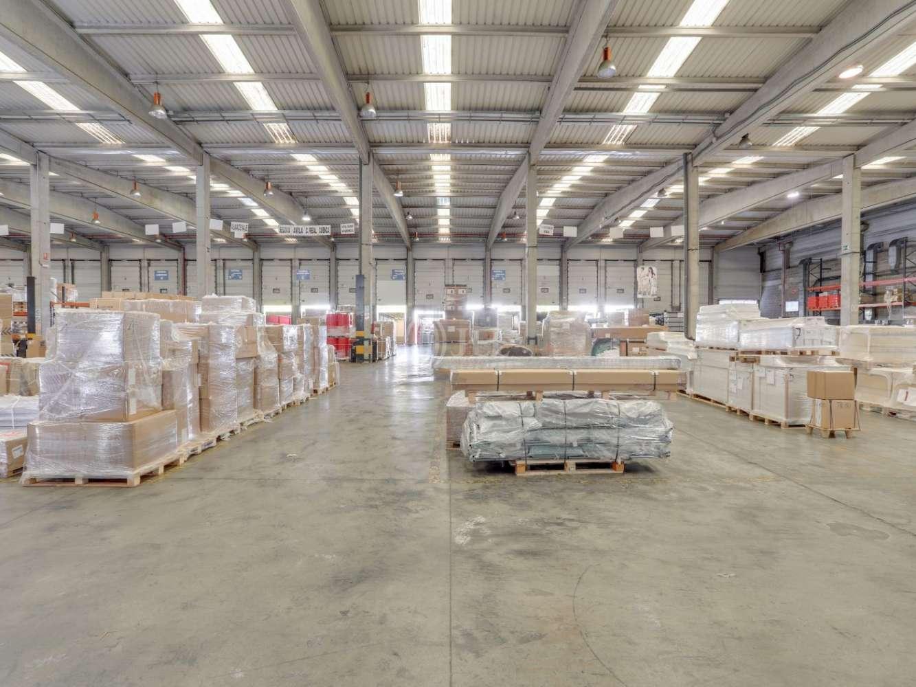Naves industriales y logísticas Coslada, 28821 - Nave Logistica - M0389 NAVE CROSSDOCK CTC COSLADA - 23093